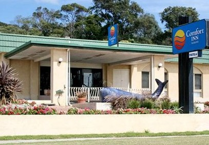 Comfort Inn Albany - Accommodation Main Beach