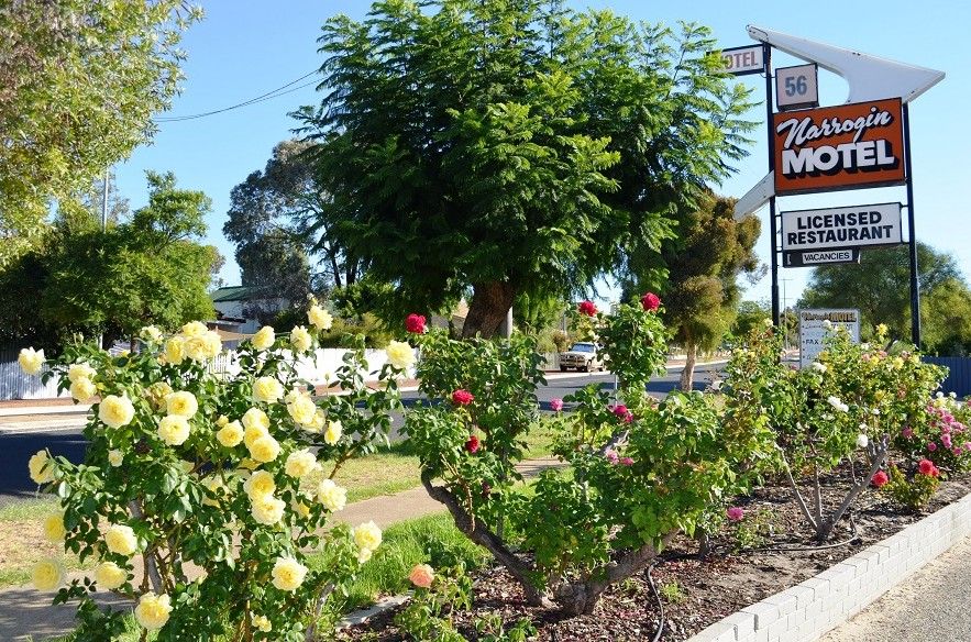 Narrogin Motel - Accommodation Main Beach