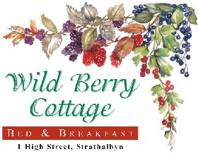 Wild Berry Cottage - Accommodation Main Beach