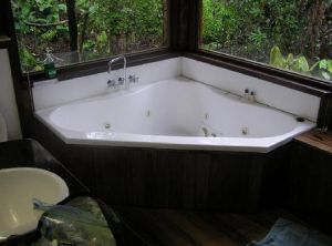 The Canopy Rainforest Tree Houses and Wildlife Sanctuary - Accommodation Main Beach
