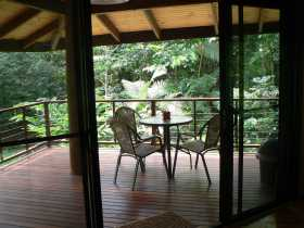 Cape Trib Exotic Fruit Farm Bed and Breakfast - Accommodation Main Beach