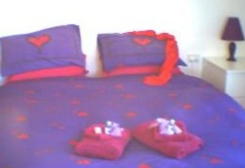 Aloomba Lavender - Accommodation - Accommodation Main Beach