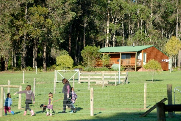 Diamond Forest Farm Stay - Accommodation Main Beach