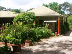 Treetops Bed And Breakfast - Accommodation Main Beach