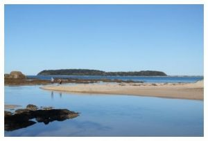 Mossy Point Holiday Rentals - Accommodation Main Beach