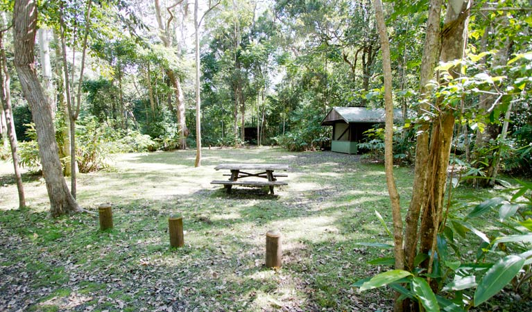 Iron Pot Creek campground - Accommodation Main Beach