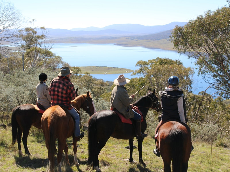 Reynella Homestead and Horseback Rides - Accommodation Main Beach