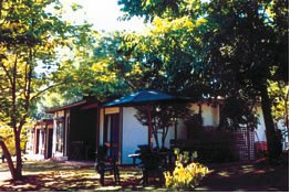 Forest Lodge - Accommodation Main Beach