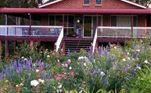 Rose Patch Bed and Breakfast - Accommodation Main Beach