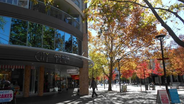Canberra Wide Apartments - City Plaza - Accommodation Main Beach