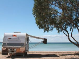 Discovery Parks - Streaky Bay Foreshore - Accommodation Main Beach