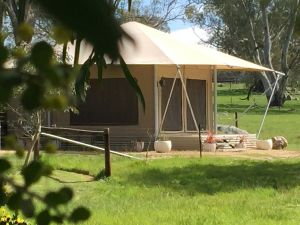 Boongarrie Luxury Tent - Accommodation Main Beach