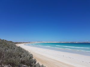 Coffin Bay National Park Campgrounds - Accommodation Main Beach
