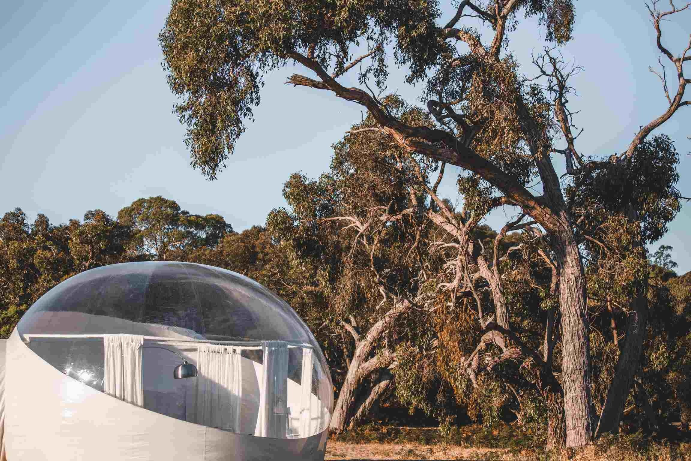 Coonawarra Bubble Tents - Accommodation Main Beach