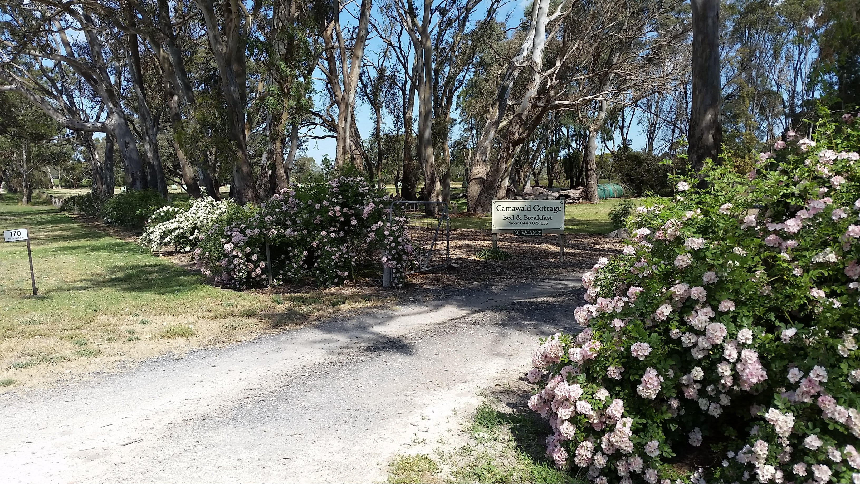 Camawald Coonawarra Cottage BB - Accommodation Main Beach