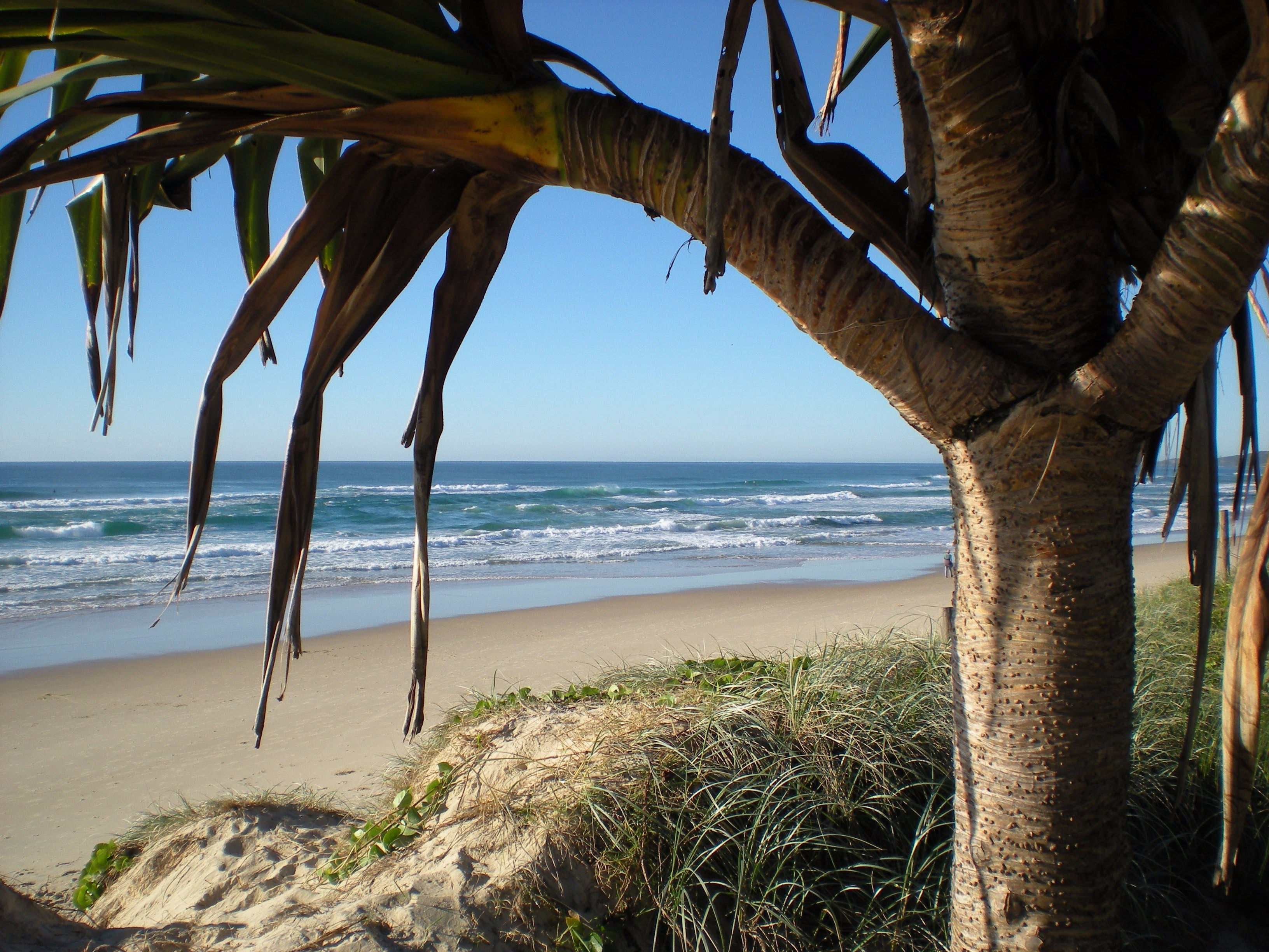 Horizons At Peregian - Accommodation Main Beach