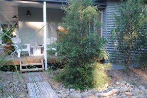 Native B and B - Callala Bay - Accommodation Main Beach