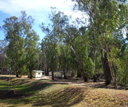 Balranald Caravan Park - Accommodation Main Beach