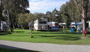 Pinjarra Caravan Park - Accommodation Main Beach