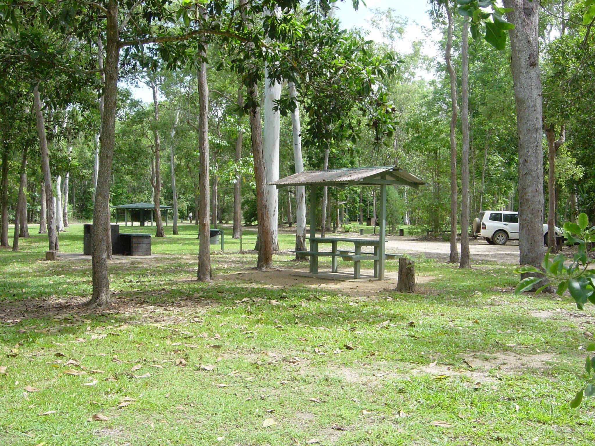 Broadwater camping area Abergowrie State Forest - Accommodation Main Beach