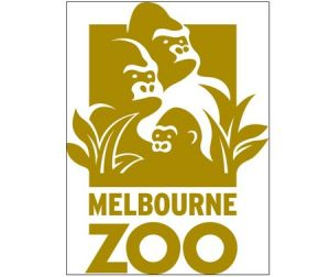 Melbourne Zoo - Accommodation Main Beach