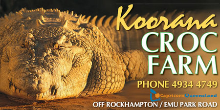 Koorana Saltwater Crocodile Farm - Accommodation Main Beach