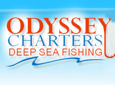 Odyssey Charters - Accommodation Main Beach