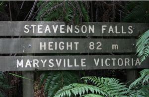 Stevensons Falls - Accommodation Main Beach