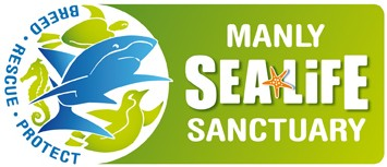 Manly SEA LIFE Sanctuary - Accommodation Main Beach