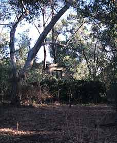 Ghost House Walk Trail Yanchep National Park - Accommodation Main Beach