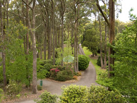 Mount Lofty Botanic Garden - Accommodation Main Beach
