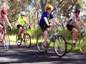 Penola Cycling Trails - Accommodation Main Beach