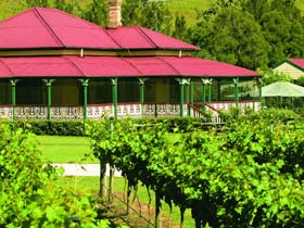 OReillys Canungra Valley Vineyards - Accommodation Main Beach