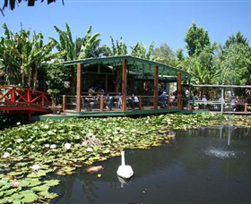 Blue Lotus Water Garden - Accommodation Main Beach