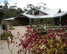 Kuranga Native Nursery and Paperbark Cafe - Accommodation Main Beach