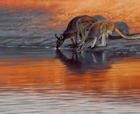 Steve Morvell Wildlife Art - Accommodation Main Beach