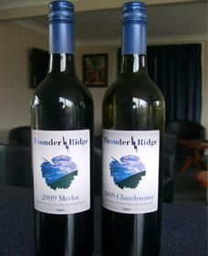Thunder Ridge Wines - Accommodation Main Beach
