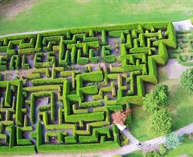 Hedgend Maze and Healesville Laser Sport - Accommodation Main Beach