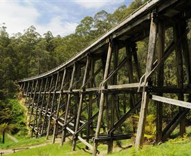Noojee Trestle Bridge - Accommodation Main Beach
