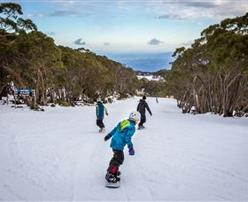 Mt Baw Baw Alpine Resort - Accommodation Main Beach