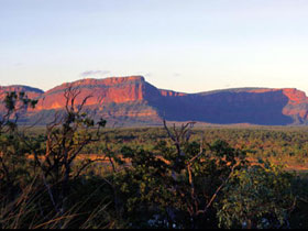 Blackdown Tableland National Park - Accommodation Main Beach