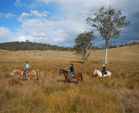 Chapman Valley Horse Riding - Accommodation Main Beach