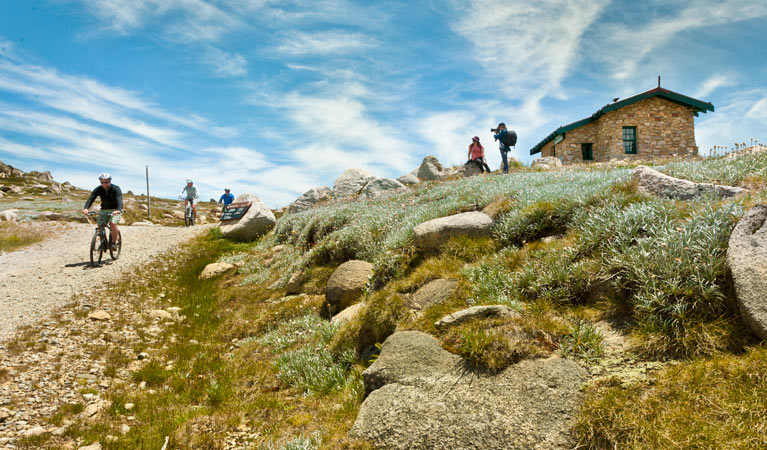 Mount Kosciuszko Summit walk - Accommodation Main Beach
