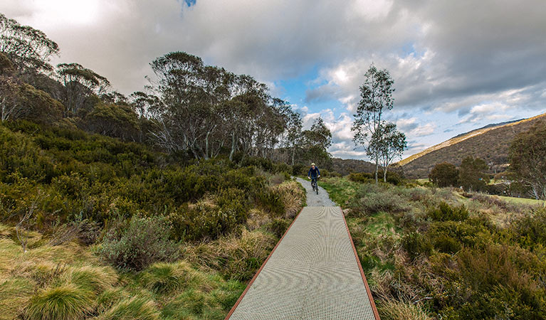Thredbo Valley track - Accommodation Main Beach