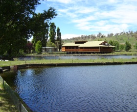 Gaden Trout Hatchery - Accommodation Main Beach
