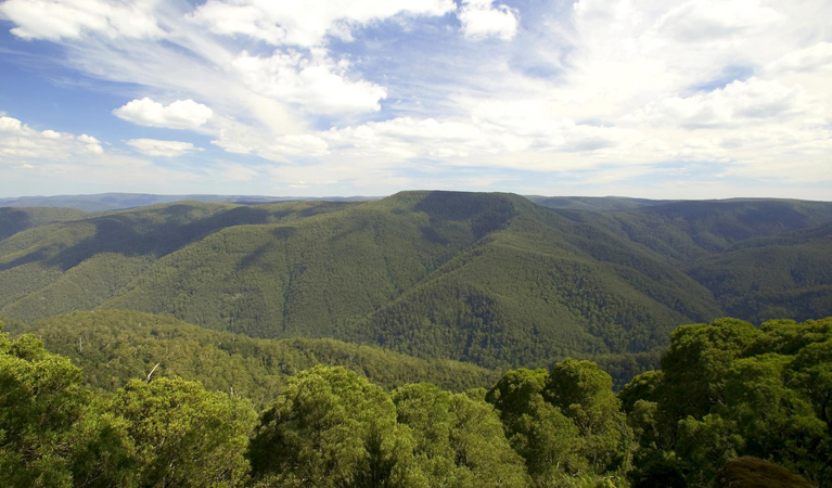Barrington Tops National Park - Accommodation Main Beach