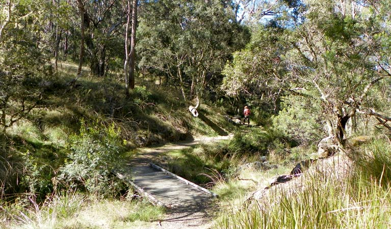 Wollomombi walking track - Accommodation Main Beach