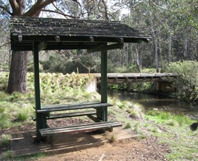 Barrington Tops State Forest - Accommodation Main Beach