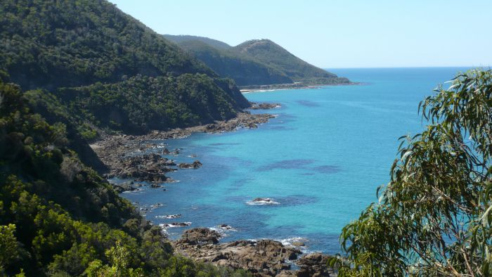Australian Natural Treasures Touring - Accommodation Main Beach