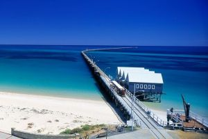 Full-Day Busselton Jetty Train Ride  Dophin Discovery - Accommodation Main Beach